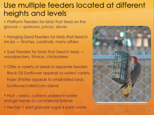 Use multiple bird feeders located at different heights and levels.